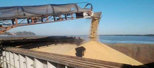exportaciones-de-soja